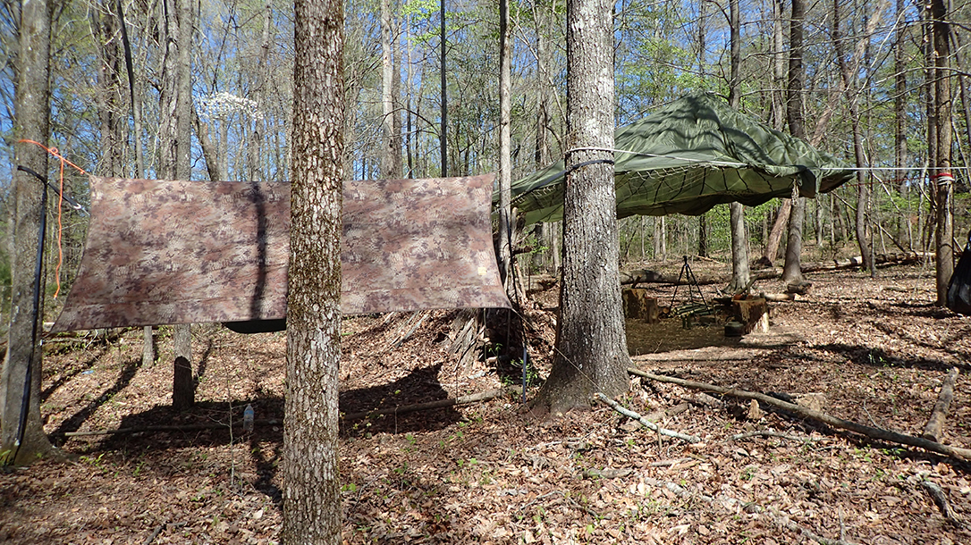 COVID-19 Quarantine, backwoods survival, camp