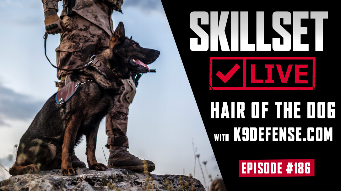 Skillset Live with K9 Defense