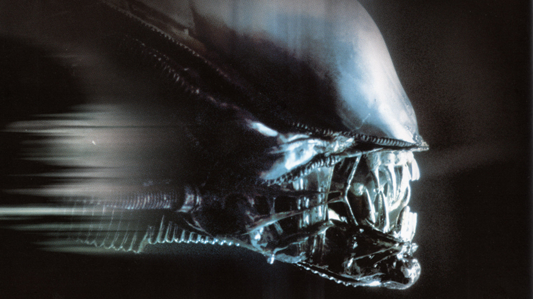 Alien, Aliens hit screens in 1979 and it's one of the best sci fi horror movies ever made.
