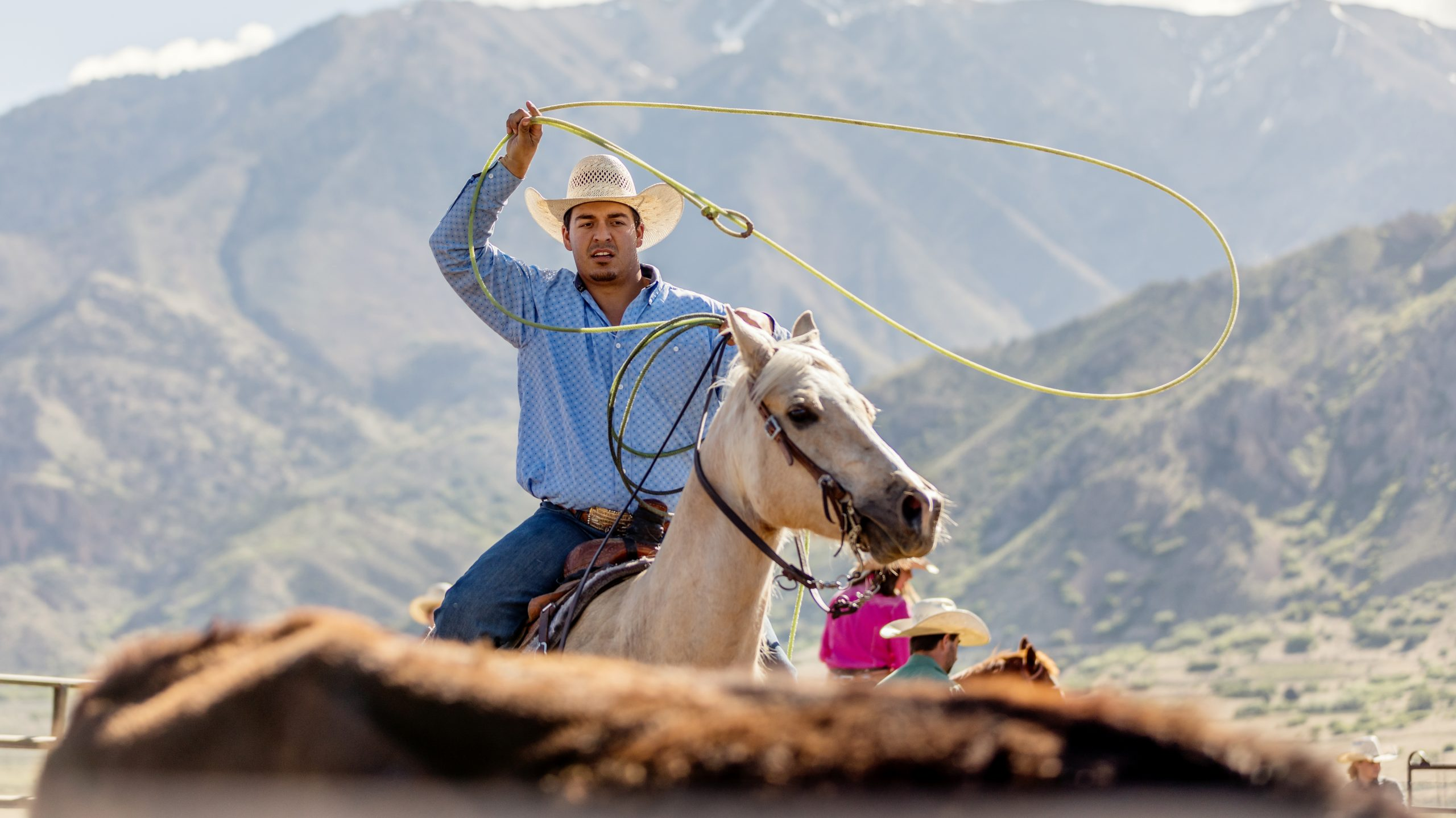 Roping and branding and modern cattle rustling.